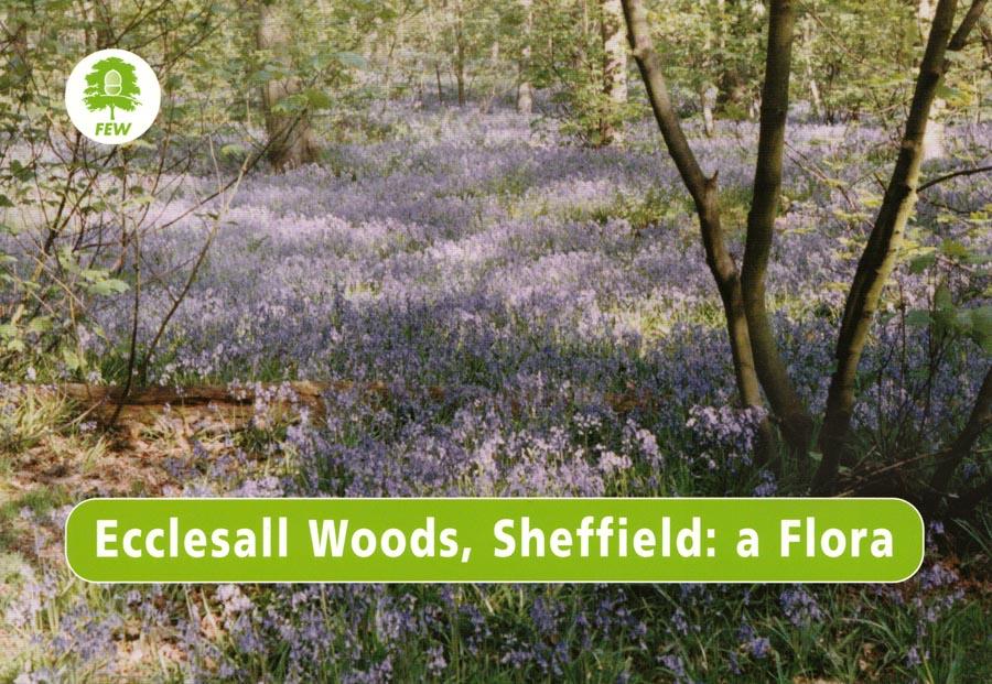 """""""Ecclesall Woods, Sheffield - a Flora"""