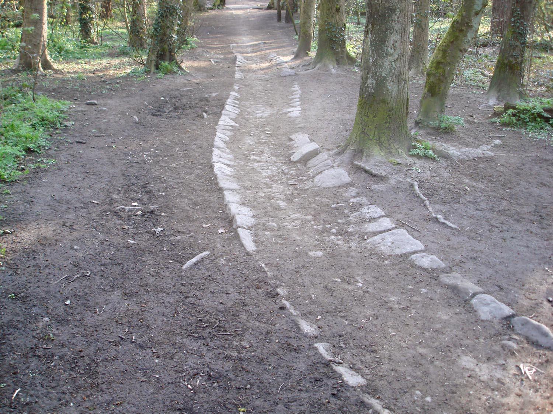 """""""sunken trackway ecclesall"""