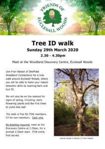 EVENT CANCELLED: Tree ID walk – Sunday 29th March