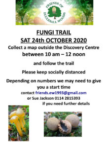 Friends of Ecclesall Woods fungi trail – Saturday 24th October 2020