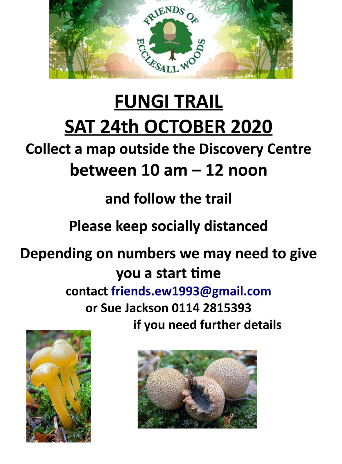 Friends of Ecclesall Woods fungi trail – Saturday 24th October 2020