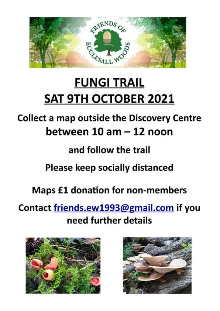 ecclesall woods fungi trail