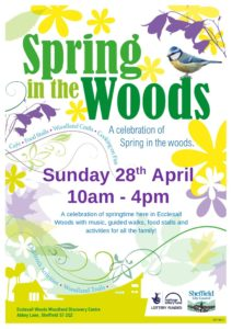 Spring in the Woods – Sunday 28th April